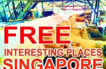 Free Interesting Places in Singapore