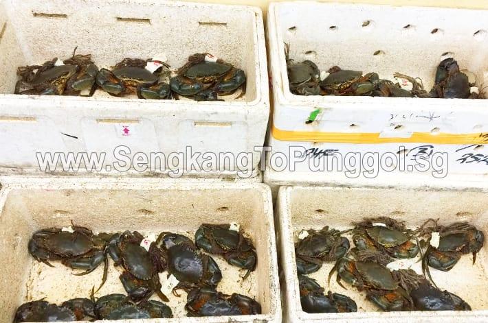 Crabs in Punggol