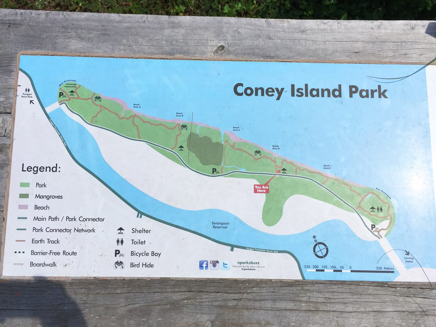 02-coney-island-map