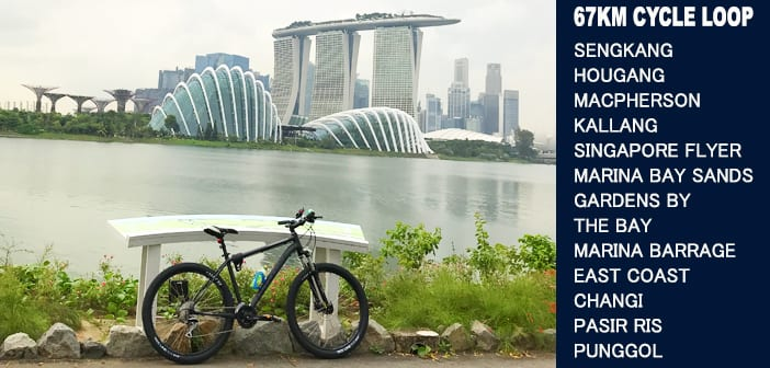 PCN Cycle Sengkang Punggol Real Estate Agent