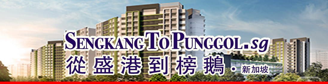 S.K.Yeo ERA – Property Agent from Seng Kang to Punggol HDB Estate | Best Possible Price in Fastest Time | HDB Specialist