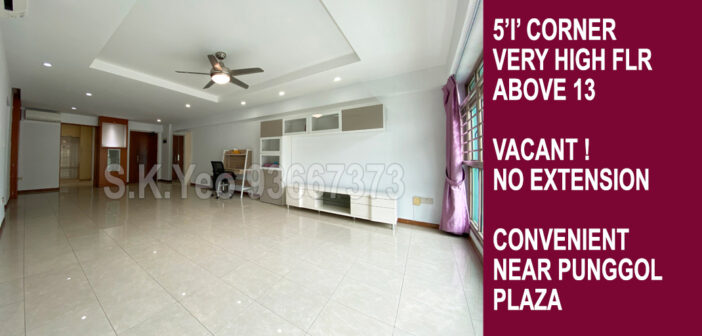 5'I' Punggol HDB For Sale – Blk 166B Punggol Central by Property Agent S.K.Yeo ERA